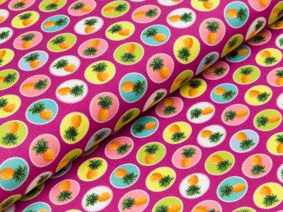 """Jersey  """"Polly"""" - Ananas in Farbkreisen - fuchsia"""