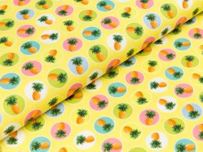 """Jersey  """"Polly"""" - Ananas in Farbkreisen - gelb"""
