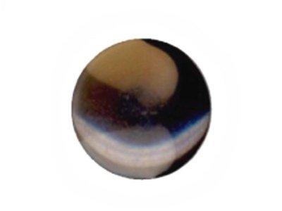 Runder Knopf, leicht transparent, schwarz, 20mm