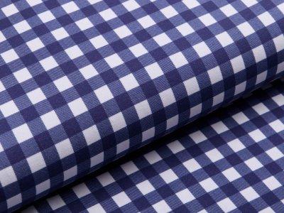 Jersey Avalana - Vichy-Karo 1 x 1 cm - weiß/blau