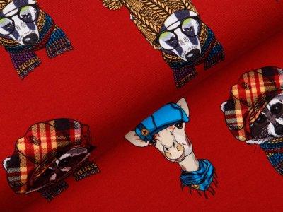 Sweat French Terry Digitaldruck Stenzo - Tiere mit coolen Mützen - rot