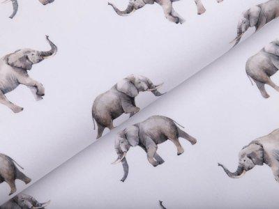 Webware Popeline Baumwolle Aquarell Digitalprint Stenzo - Elefanten - weiß