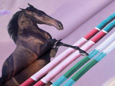 Jersey Digitaldruck Stenzo PANEL ca. 120 cm x 150 cm - Springpferde - lavendel