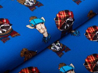 Sweat French Terry Digitaldruck Stenzo - Tiere mit coolen Mützen - kobaltblau