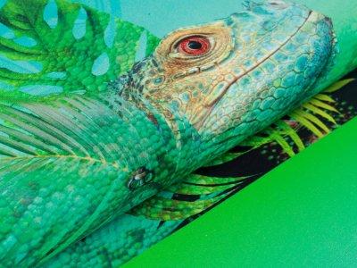 Jersey Digitaldruck PANEL ca. 75 cm x 150 cm - Leguan - türkis