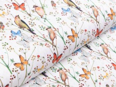 Webware Popeline Baumwolle Stenzo - Vögel und Schmetterlinge - weiß