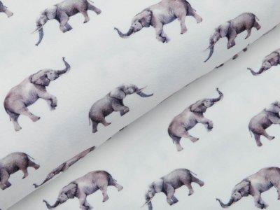 Jersey Digitaldruck - Elefanten - wollweiß