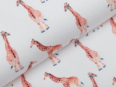Jersey Digitaldruck - Giraffen - wollweiß