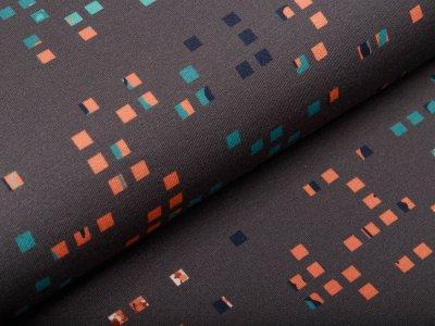 Modal Sweat French Terry Bordürenstoff Swafing Decode by Bienvenido Colorido - Pixel - anthrazit