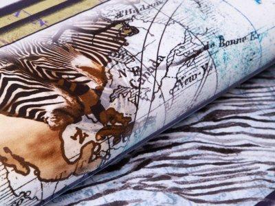 Jersey Digitaldruck Stenzo PANEL ca. 150 cm x 150 cm - Zebras auf Landkarte - weiß