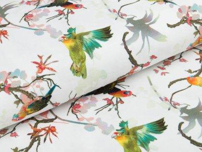 Jersey Pandora Bipp Design® - Aras auf Zweigen - weiß