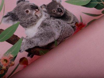 Jersey Digitaldruck Stenzo PANEL ca. 100 cm x 150 cm -  Koalabären - rosa