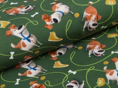 Jersey  Dreamworks - Pets - Hund Max - grün