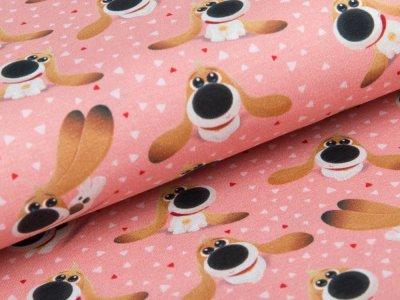 Jersey  Dreamworks - Pets - Hund Pops - rosa