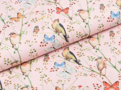 Webware Popeline Baumwolle Stenzo - Vögel und Schmetterlinge - rosa