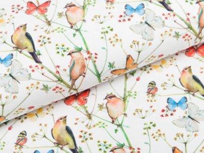 Jersey Digitaldruck Stenzo - Vögel und Schmetterlinge - weiß