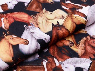 Webware Baumwolle - Swafing - Kim -  Pferde