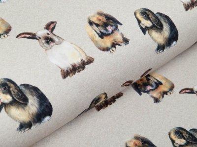 Sweat French Terry Digitaldruck Stenzo I Love to Hug my Rabbit - verschmuste Häschen - meliert beige