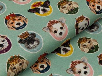 Jersey - Hundeköpfe im Rahmen - mint