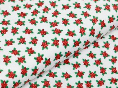 Webware Baumwolle Popeline - Christsterne - wollweiß