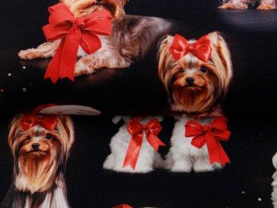 Jersey Digitaldruck - Weihnachtliche Hunde - schwarz