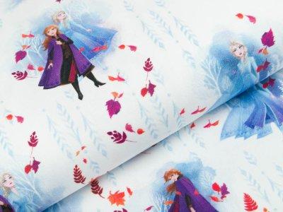 Jersey Swafing Disney-Frozen 2 - Anna und Elsa - weiß