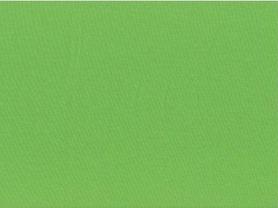 """Angerauter Sommersweat Swafing """"Eike"""" hellgrün"""