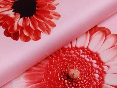 Leicht elastische Webware Baumwollsatin Sawfing Tinted Flower by Cherry Picking - wundervolle Blumen - rosa